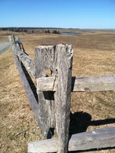 Fence at Fort Hill