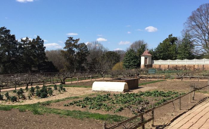 Mount Vernon kitchen garden