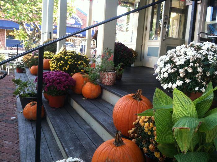 pumpkins-greenport-long-island